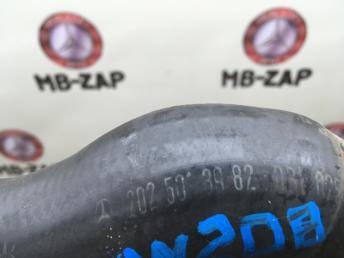 Патрубок радиатора Mercedes W208 2025013982